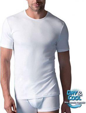 T-Shirt manches courtes coton Abanderado