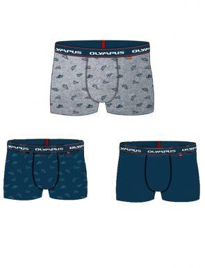 Lot de 3 boxers Olympus en coton pour garçon